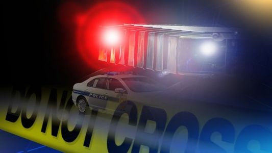 Shots fired after robbery suspect runs from police
