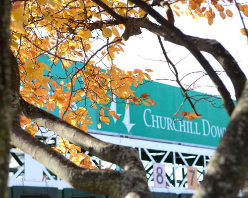 Churchill Downs welcomes back fans for start of 24-day Fall Meet
