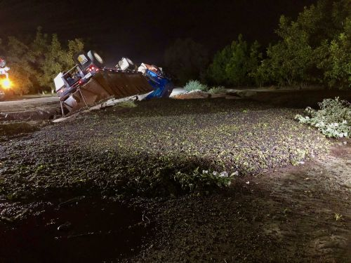 Spilled wine grapes, truck close road in Manteca