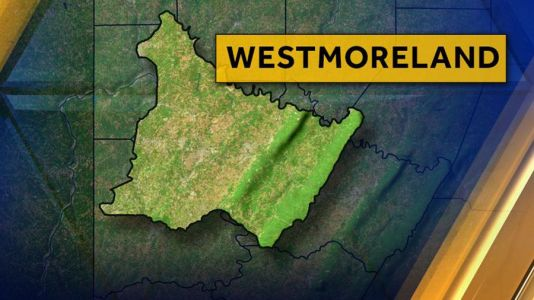 Police investigating after cat is shot in Westmoreland County