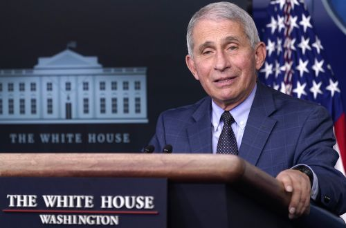 Fauci urges Americans to do 'risk-benefit assessment' before Thanksgiving