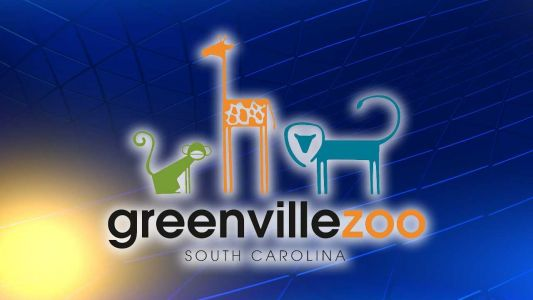Weather forces cancellation of Saturday's Boo in the Zoo