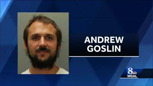 Lancaster County man charged with assaulting two police officers