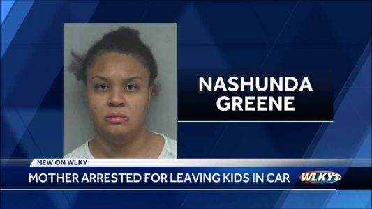 Indiana mom accused of leaving kids in car while shopping