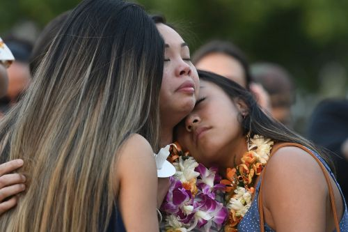 Hawaii considers even stricter gun laws after fatal cop shooting