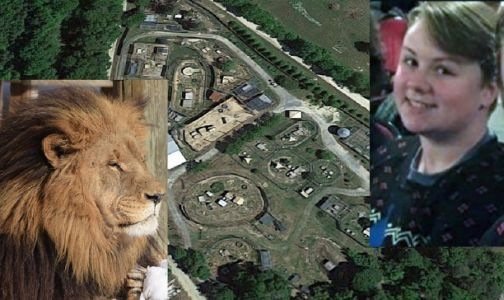 Report details how intern was killed by lion at NC animal preserve