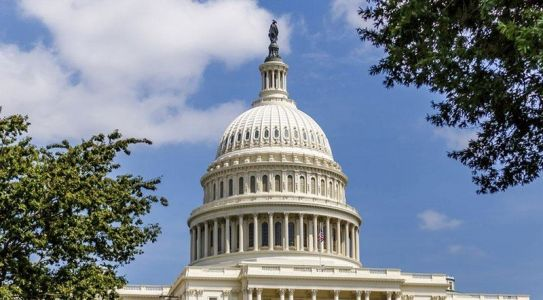 House of Representatives will report on antitrust probe in early 2020