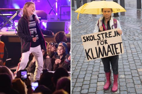 Greta Thunberg 'Rickrolls' climate concert with crazy dance moves in Sweden