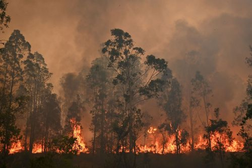 3 Dead, Dozens Injured as Wildfires Destroy Homes on Australia's East Coast