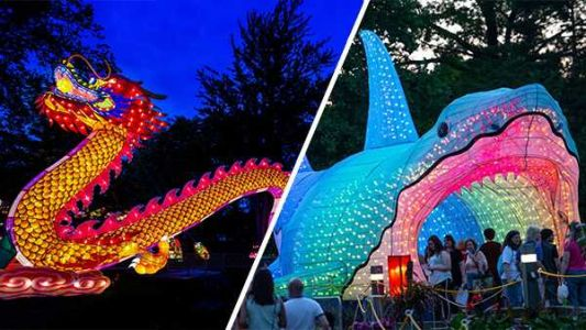 Louisville Zoo will host one of the nation's largest lantern festivals next year