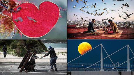 Wider geography, more talent: Andrei Stenin press photo contest sets new record