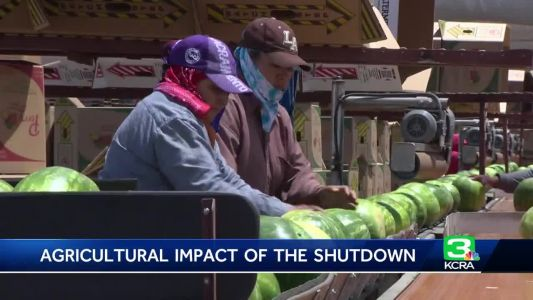 California Central Valley farmers keep close eye on government shutdown