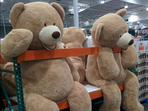 10 comically large items you can buy at Costco