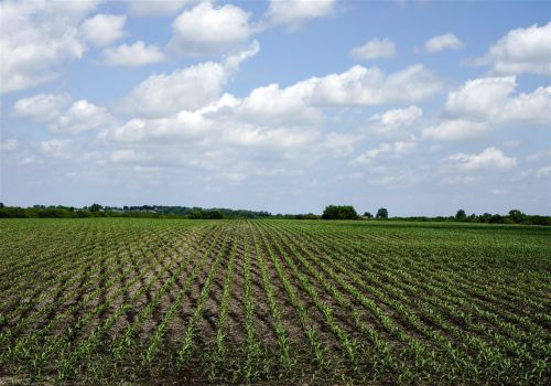 Most Pa. lawmakers voted yes on farm bill