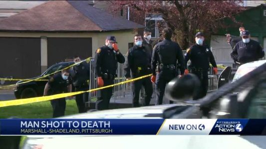 Man found shot dead in Pittsburgh's Marshall-Shadeland neighborhood