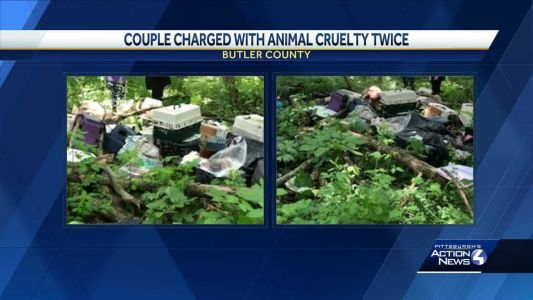 Couple charged with animal cruelty twice after 19 dead animals found in wooded area