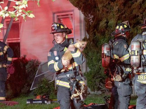 9 pets rescued from Salinas house fire, 1 firefighter injured