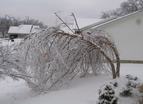 Belski's Blog - Comparing the ice storm of 2018 with 2009