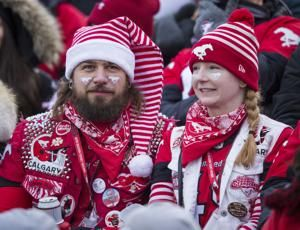 Stampeders reach Grey Cup, beating Blue Bombers 22-14