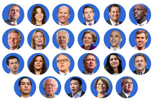 The most comprehensive policy guide you'll find on the 2020 presidential race