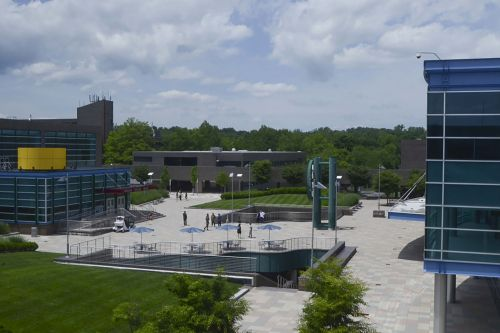 SUNY failed to protect man from harassment after rape claim, suit says