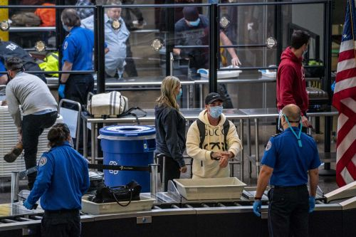 Sunday was the busiest day for US air travel since the pandemic began