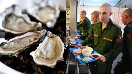 We don't serve oysters yet, but Russian troops are very well-fed - deputy DM