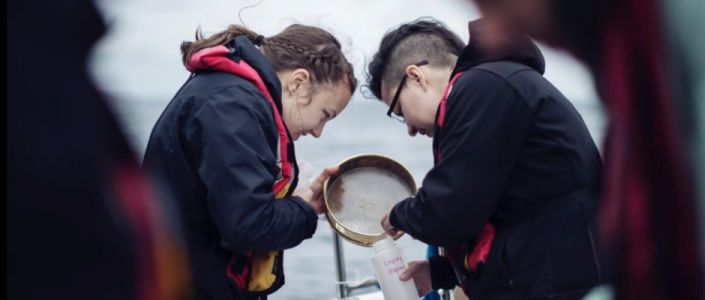 Watch: Guts, Noah Hutton and Taylor Hess's Short Doc on the Feminist, Anti-Colonial Environmental Lab, CLEAR