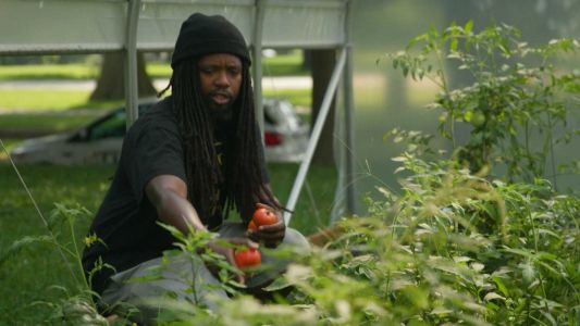 CommUNITY Champion: Louisville organization uses gardening programs to combat food deserts