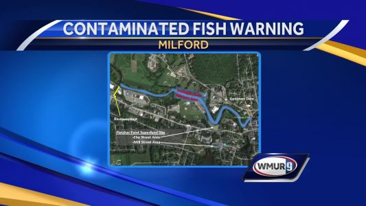 EPA warns public to avoid eating fish from portion of Souhegan River