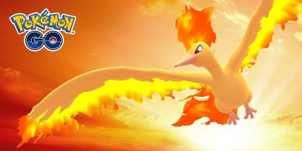 How to take on Moltres in Pokémon Go