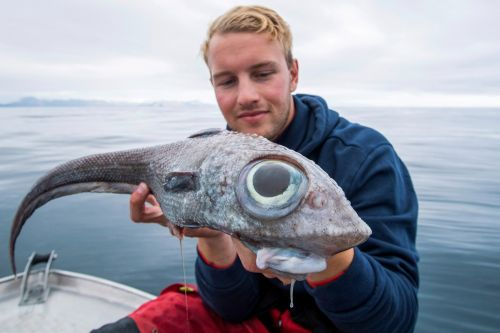 Teen catches strange, 'dinosaur-like' fish with bulbous eyes