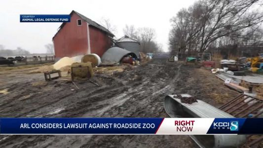 ARL recovers 40 more animals at Iowa roadside zoo; more unaccounted for