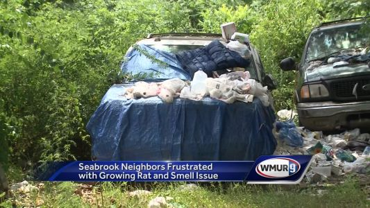 Seabrook residents complain about rats, smell coming from neighboring property
