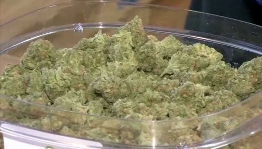 Here's why Gov. Baker says pot shops are nonessential businesses
