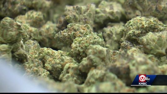 Some of Missouri's medical marijuana dispensaries see a busy 4/20 day