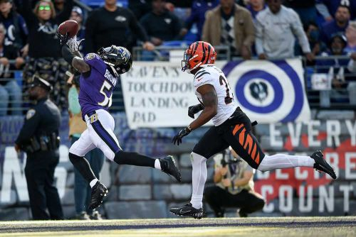 Bengals take first place in the AFC North with win over Ravens