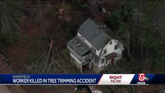 Tree worker killed leaves behind wife, two children