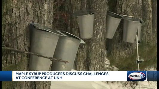 Climate change causes problems for NH maple producers