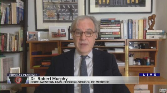 'This new variant is going to take over the viral population' Dr. Robert Murphy answers viewer COVID-19 questions 1/19