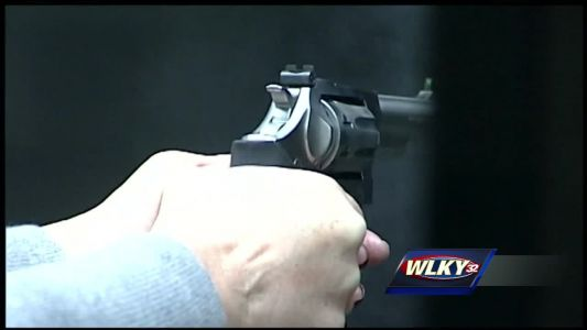 Senate panel advances bill allowing individual to carry concealed firearm without permit