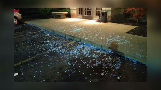Gender reveal party ends in fight outside Applebee's, police say