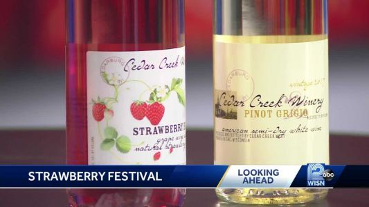 Food, crafts and wine at Cedarburg's strawberry festival