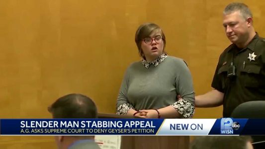 Slender Man stabbing: State AG asks Wis. Supreme Court to deny Morgan Geyser's petition for review