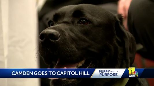 Camden tells all about her trip to Capitol Hill