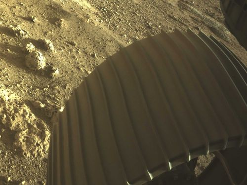NASA set to release first video from Mars rover