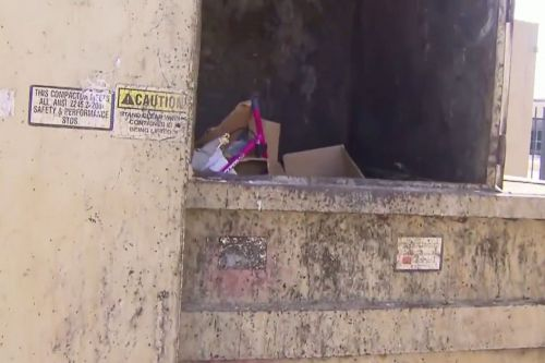 Texas police hunt for mom of newborn boy left near dumpster
