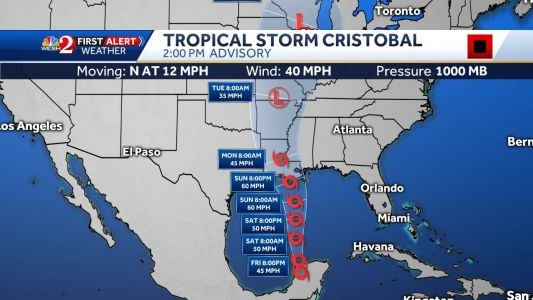 Cristobal regains tropical storm force on track to US coast