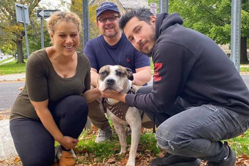 NYC dog, whose owner was murdered, gets new home
