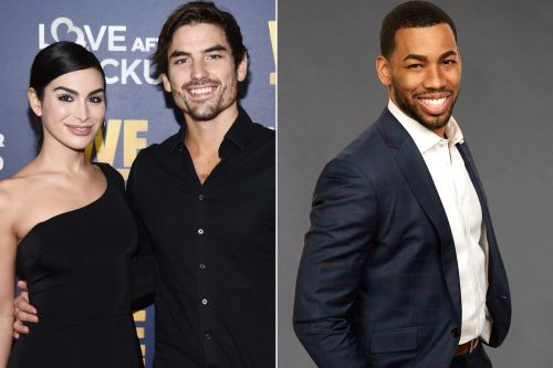 Ashley Iaconetti says Mike Johnson and Demi Lovato are 'very compatible'